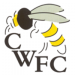 Chalfont Wasps FC