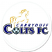 Carryduff Colts FC