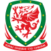 Football Association of Wales: Goalkeeping B Licence (Pending)